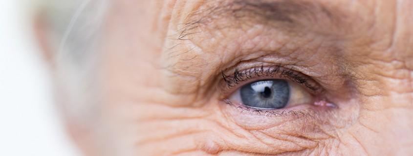 eye health nutrition aging
